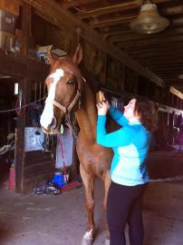 KAte with horse