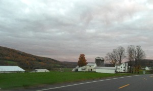 central-ny-farmland (2)